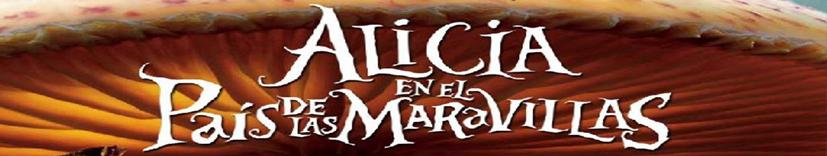 alicia banner