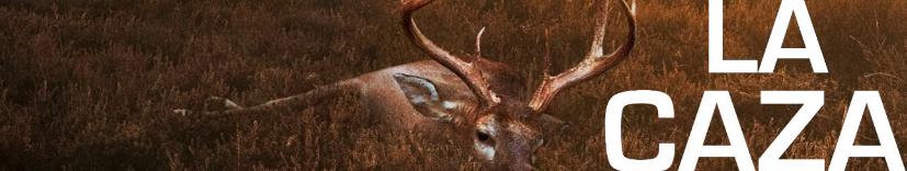 the hunt la caza_banner